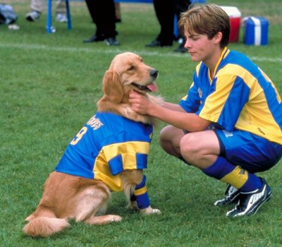 Air Bud: World Pup online