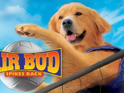 watch Air Bud: Spikes Back streaming