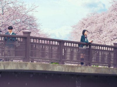 watch Let Me Eat Your Pancreas streaming