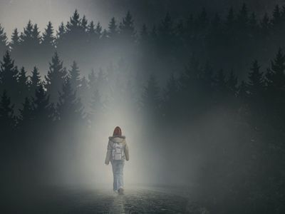 watch The Girl in the Fog streaming