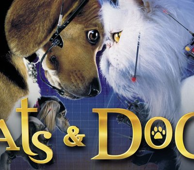 Cats & Dogs online