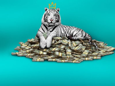 watch The White Tiger streaming