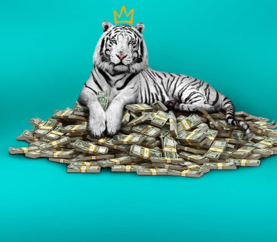 The White Tiger online