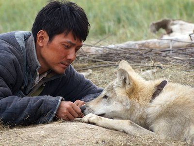 watch Wolf Totem streaming