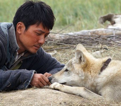 Wolf Totem online
