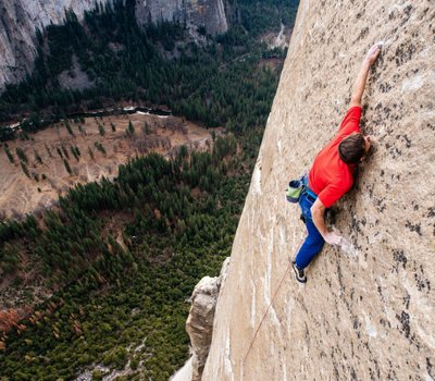 The Dawn Wall online