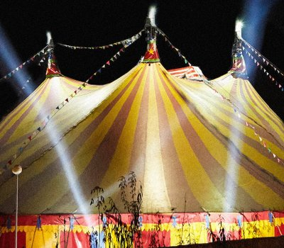 The Circus online