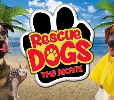 Rescue Dogs online