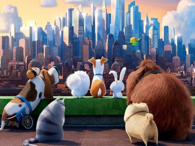 watch The Secret Life of Pets streaming