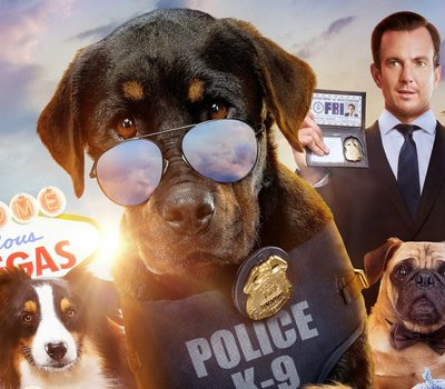 Show Dogs online