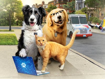 watch Cats & Dogs 3: Paws Unite streaming