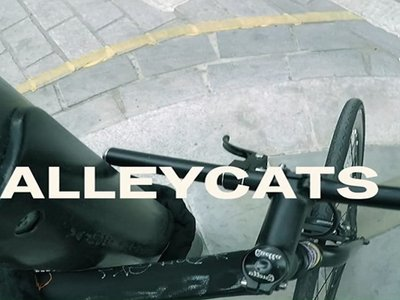 watch Alleycats streaming
