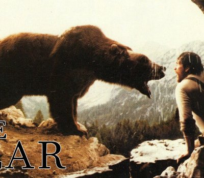 The Bear online