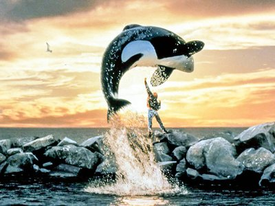 watch Free Willy streaming