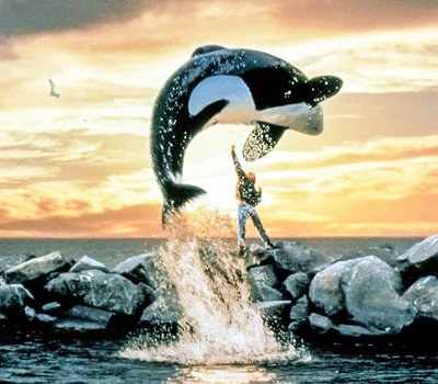 Free Willy online