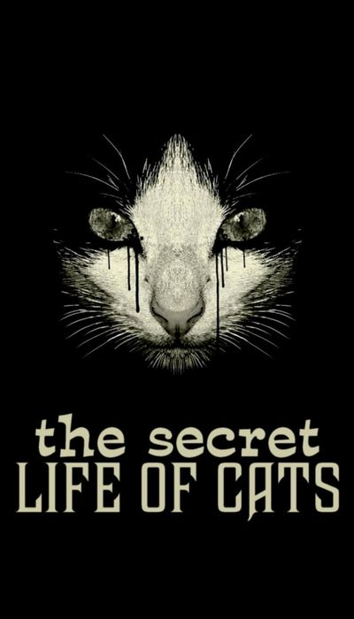 The Secret Life of Cats movie