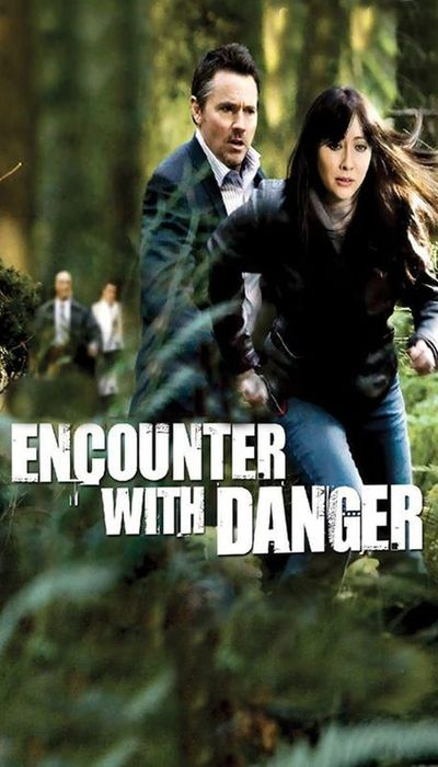Encounter with Danger movie