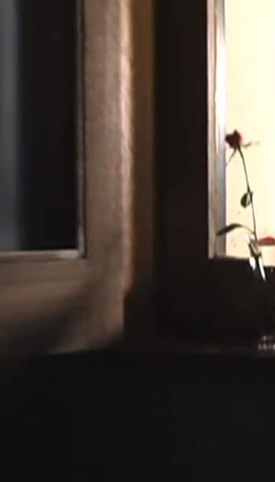 Rosecolored Flower movie