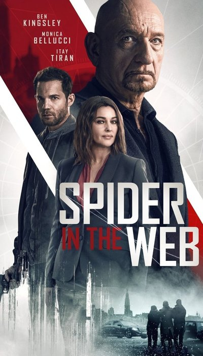 Spider in the Web movie