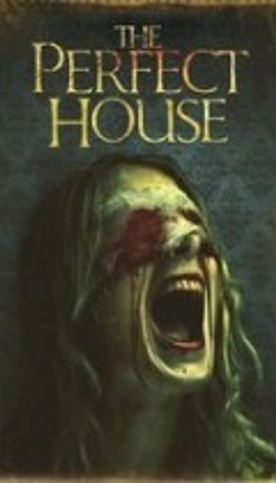 The Perfect House movie
