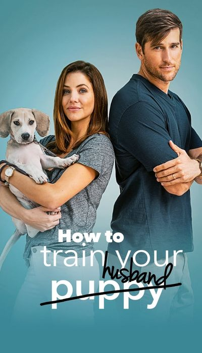 How to Train Your Husband movie